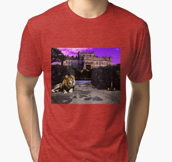 Lion Guard  Tri-blend T-Shirt by Kami Catherman T-Shirt