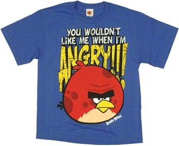 Angry Birds You Wouldn't Like Me When I'm Angry Youth T-Shirt