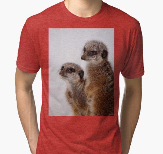 Family Ties Tri-blend T-Shirt by Carol Bleasdale T-Shirt